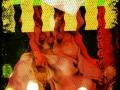 6-a-era-de-aquario-set-out-2014-fil-felix-colagem