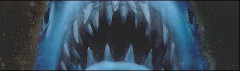 """[Especial] As Capas de """"Tubarão"""" !"""