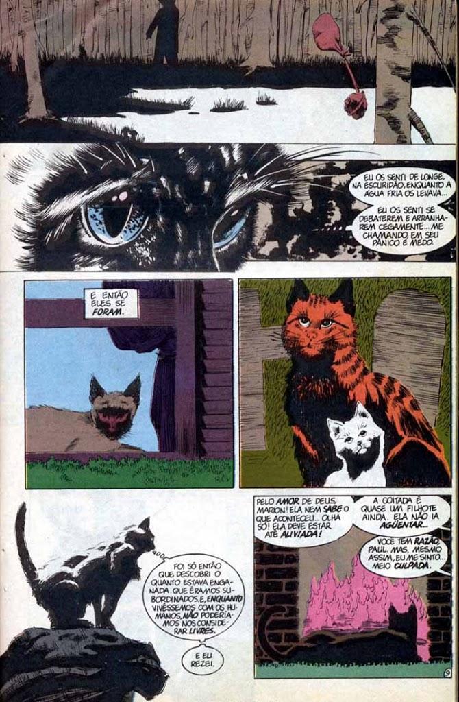 sandman-252318-um-sonho-de-mil-gatos