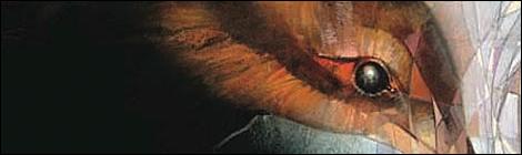[Review] Sandman: Edição Definitiva Vol. 1 !