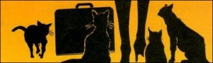 mulher-gato-cap-C3-ADtulo-1