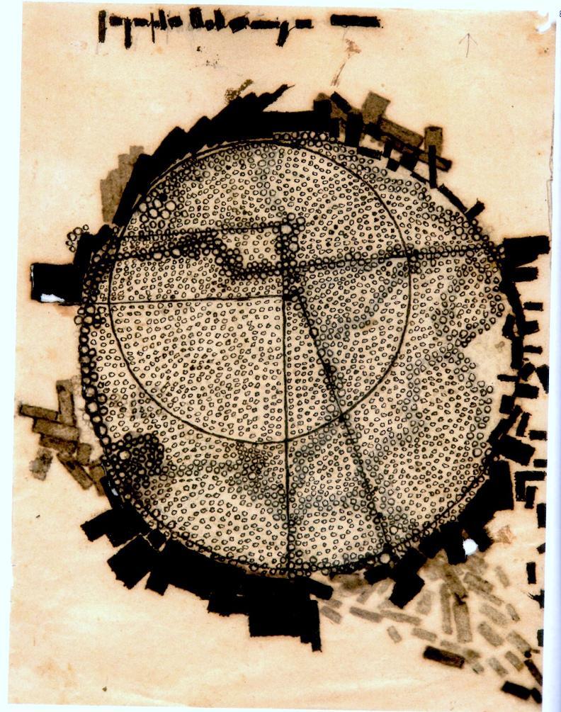 Desenhos do Juquery - Pedro Cornas 1