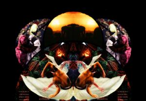 Fil Felix - Colagem - Lotus Branca