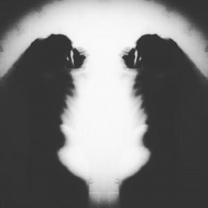Fil Felix - Foto (Sombras)